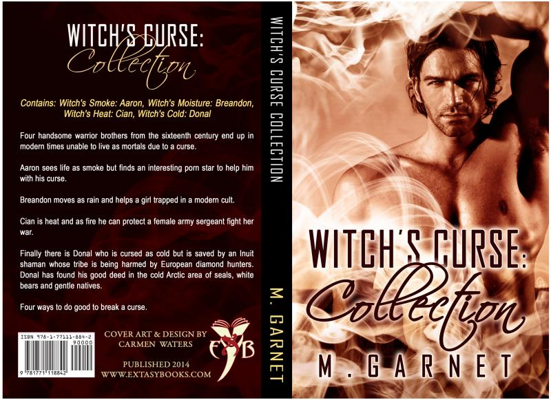Witchs Cold: Donal (Witchs Curse Book 4)